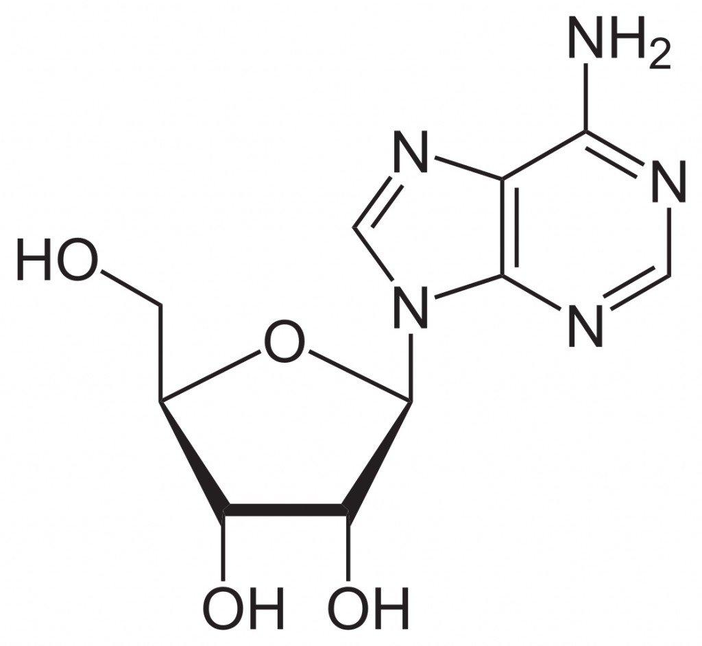 Adenosin