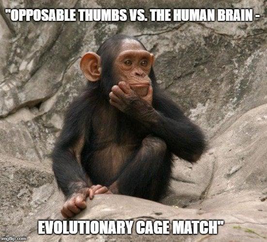Opposable thumbs vs. the human brain meme
