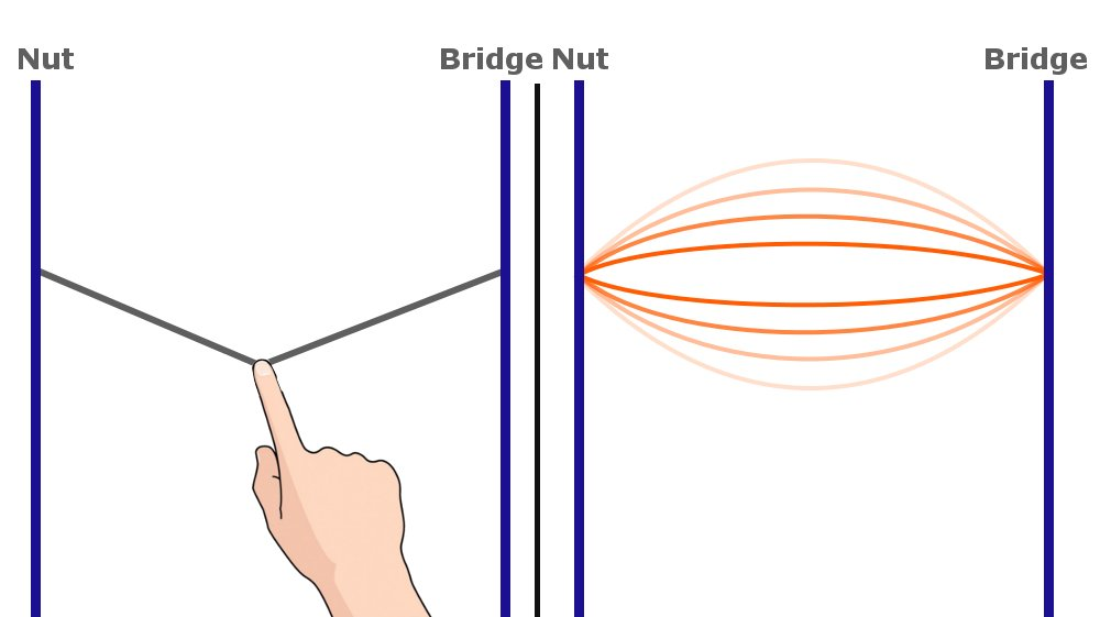 vibration, nut, bridge