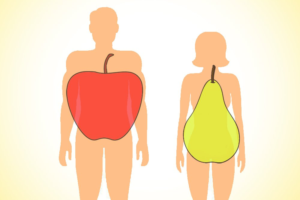 body apple and pear shape