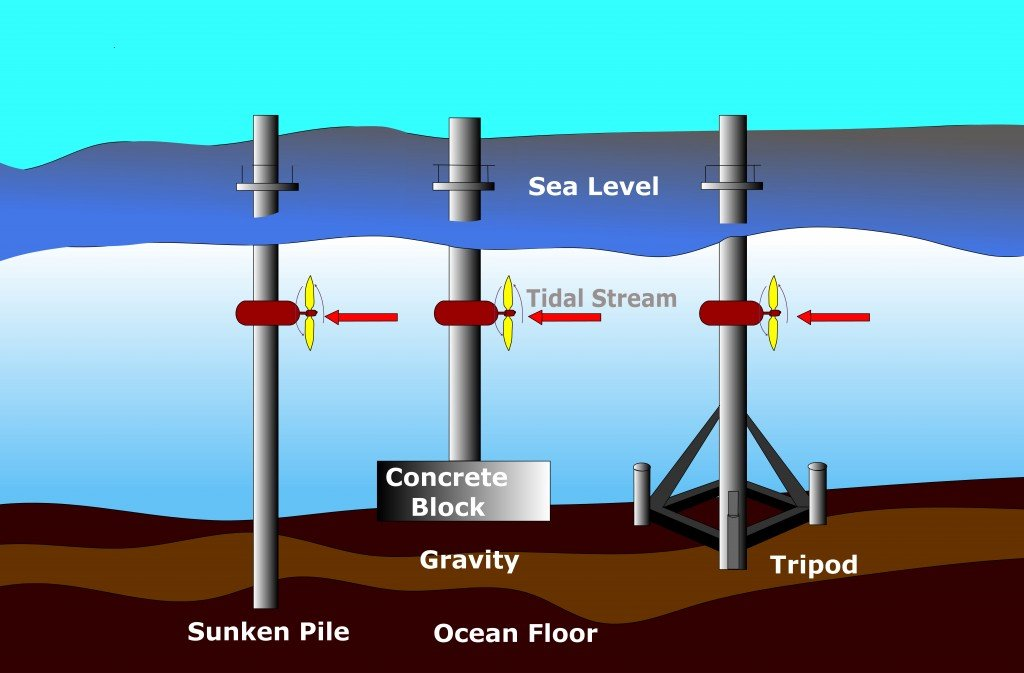 tidal energy, What Is Tidal Energy And How Is It Harnessed?, Science ABC, Science ABC