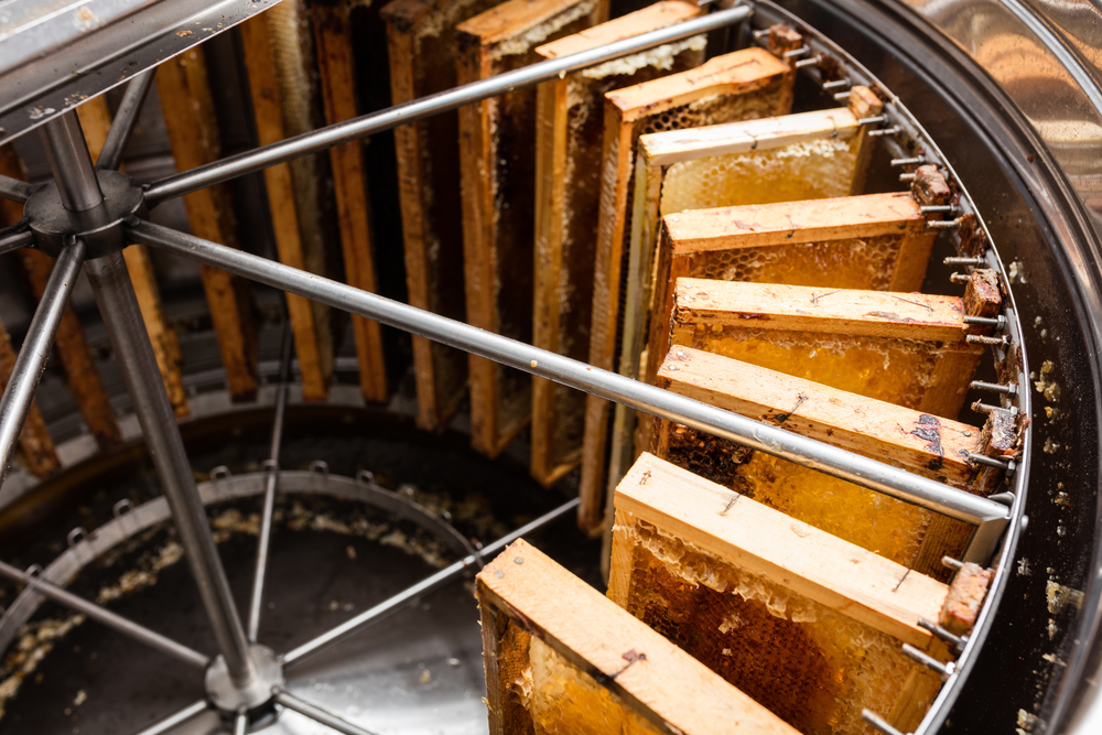 Honey extractor machine(J. Lekavicius)S