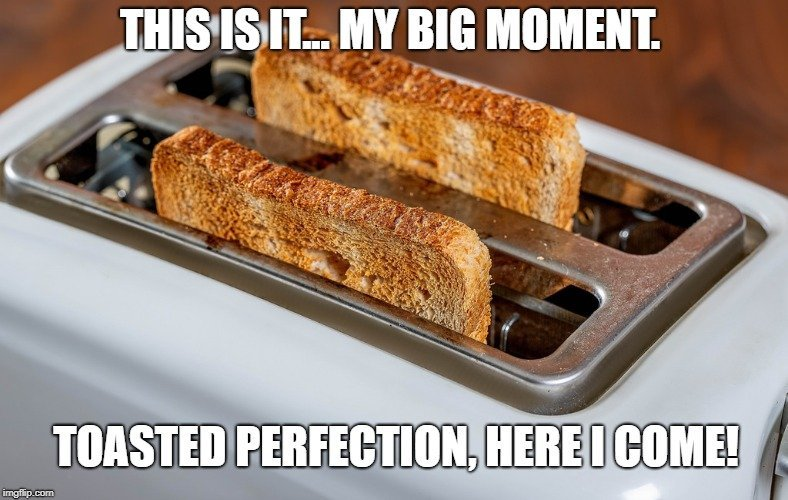Toasted perfection, here I come meme