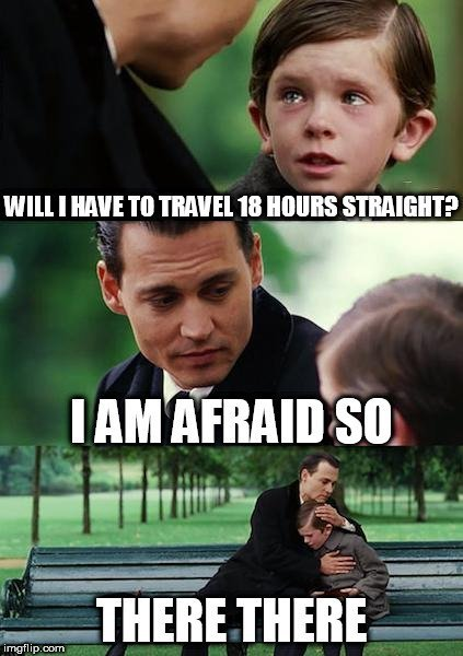 WILL I HAVE TO TRAVEL 18 HOURS STRAIGHT I AM AFRAID SO; THERE THERE meme