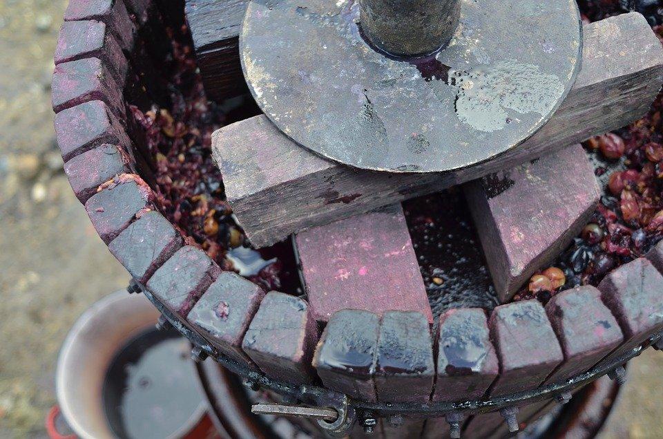 grape pressing