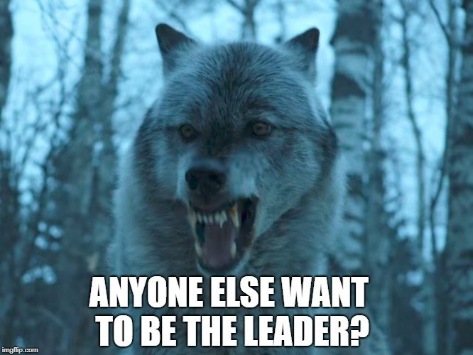 Anyone else want to be the leader meme