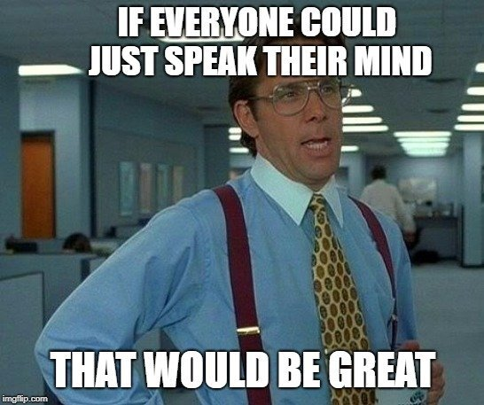 IF EVERYONE COULD JUST SPEAK THEIR MIND; THAT WOULD BE GREAT meme