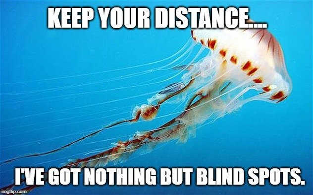 Keep your distance meme