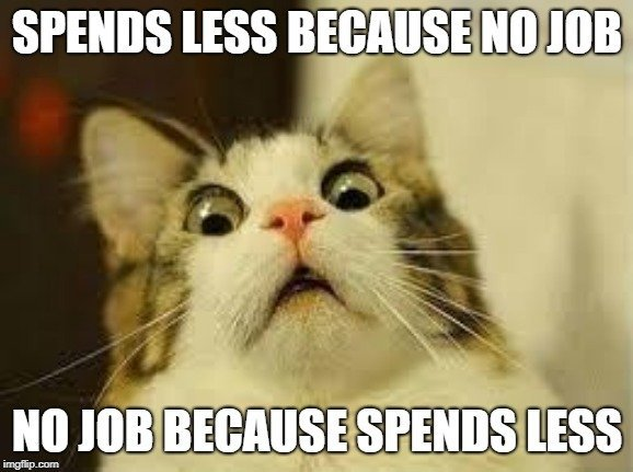 SPENDS LESS BECAUSE NO JOB; NO JOB BECAUSE SPENDS LESS meme
