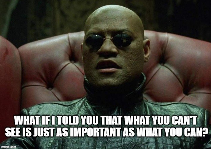 What if I told you that what you can't see is just as important as what you can meme
