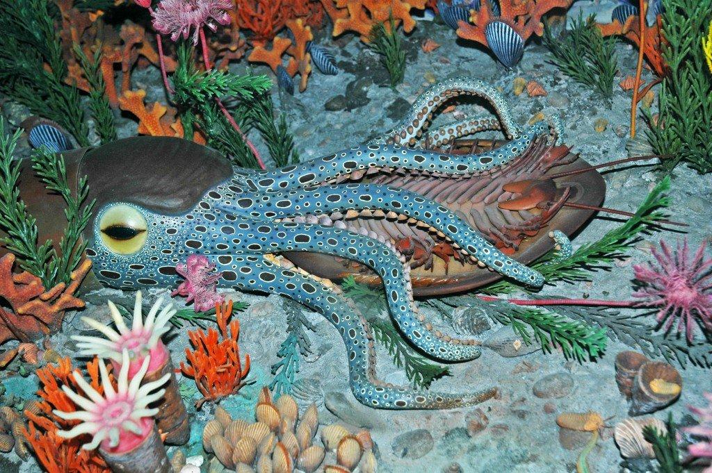 Diorama_of_a_Cincinnatian_seafloor_(Late_Ordovician)_-_nautiloid_eating_an_Isotelus_trilobite