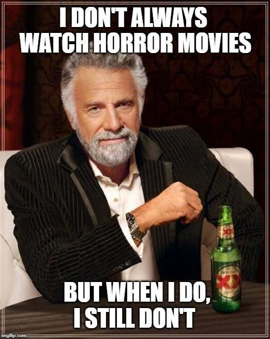 I DON'T ALWAYS WATCH HORROR MOVIES; BUT WHEN I DO, I STILL DON'T meme