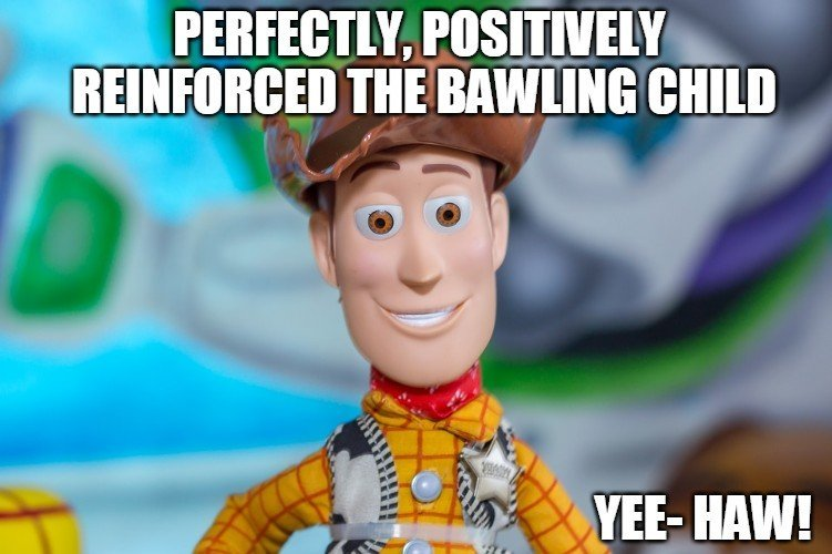 Perfectly positively reinforced the bawling child meme