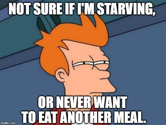 or never want to eat another meal meme