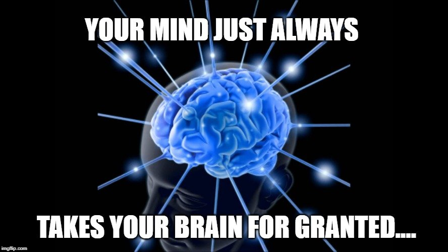 takes your brain for granted meme