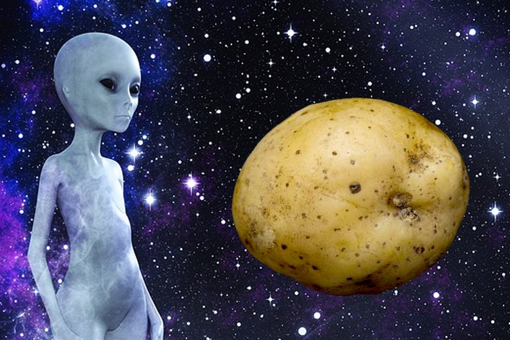 alien and potato