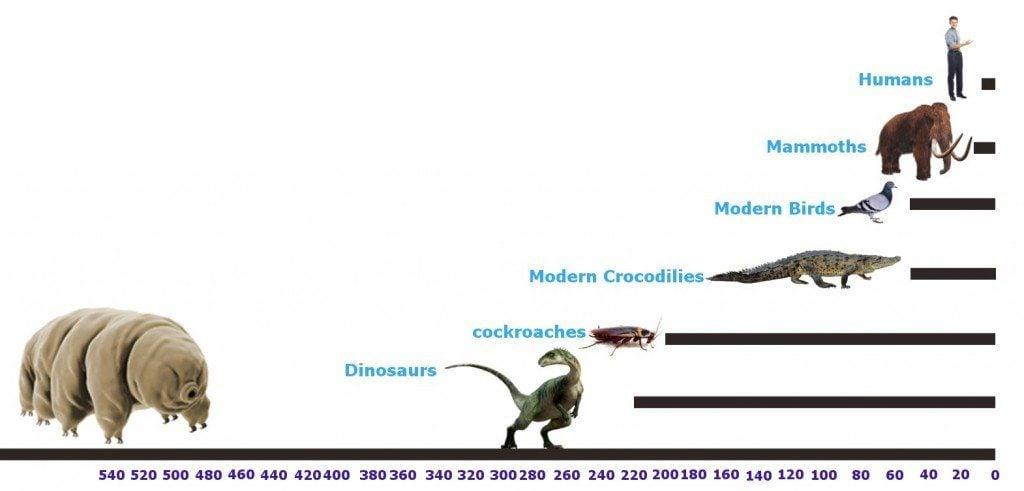 tardigrades 500 millions ago