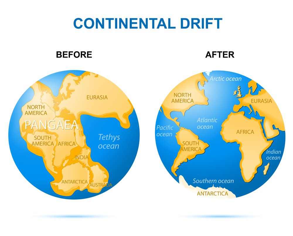 Continental drift on the planet Earth. Before as Pangaea(Designua)s