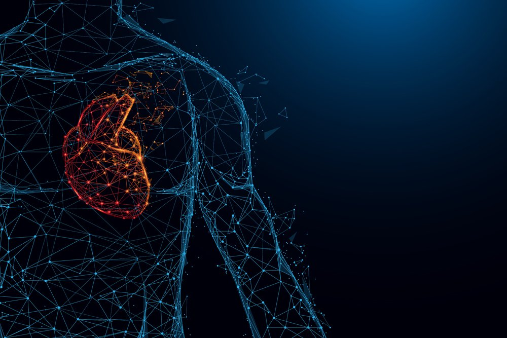 Human heart anatomy form lines and triangles, point connecting network on blue background. Illustration vector - Vector(piick)s