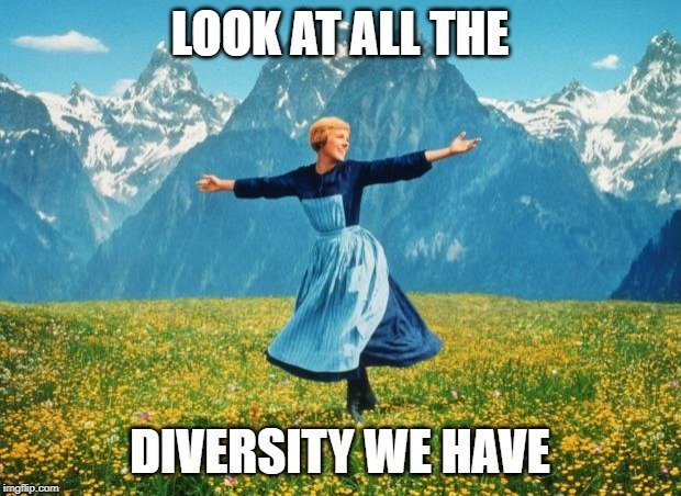 LOOK AT ALL THE; DIVERSITY WE HAVE meme