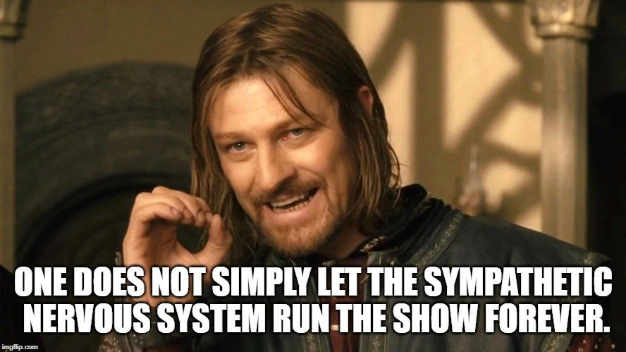 One does not simply let the sympathetic nervous system run the show forever meme