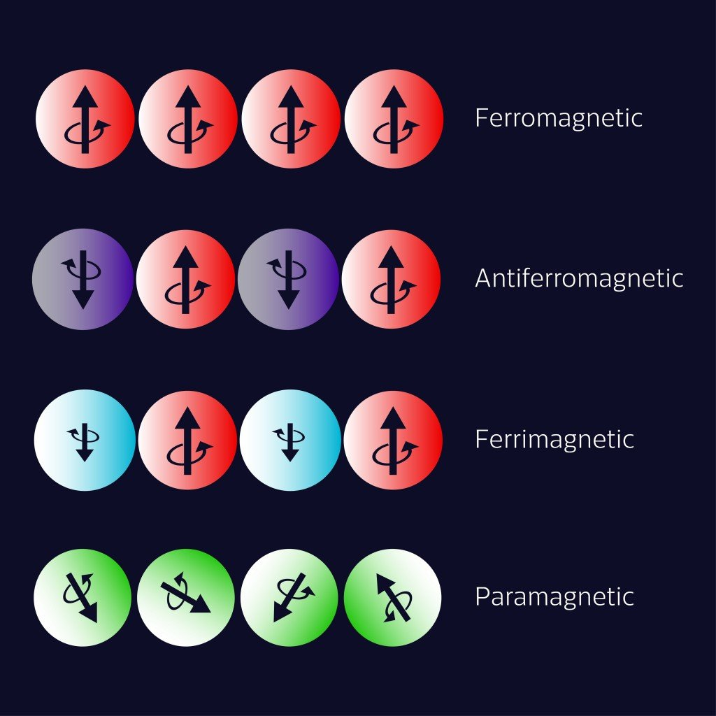Types of magnetism diagram. Ferromagnetism, Antiferromagnetism, Ferrimagnetism, Paramagnetism. Vector illustration. - Vector( Inna Bigun)s
