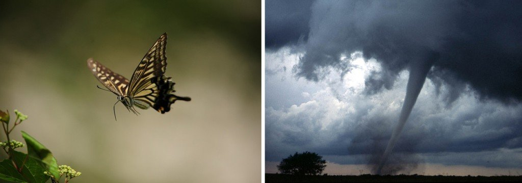 butterfly and tornado