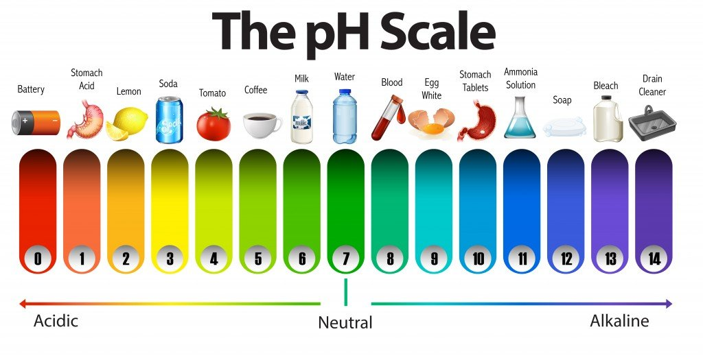 A pH scale on white background illustration - Vector(BlueRingMedia)s