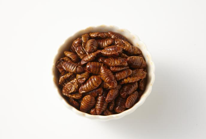 Beondegi insect