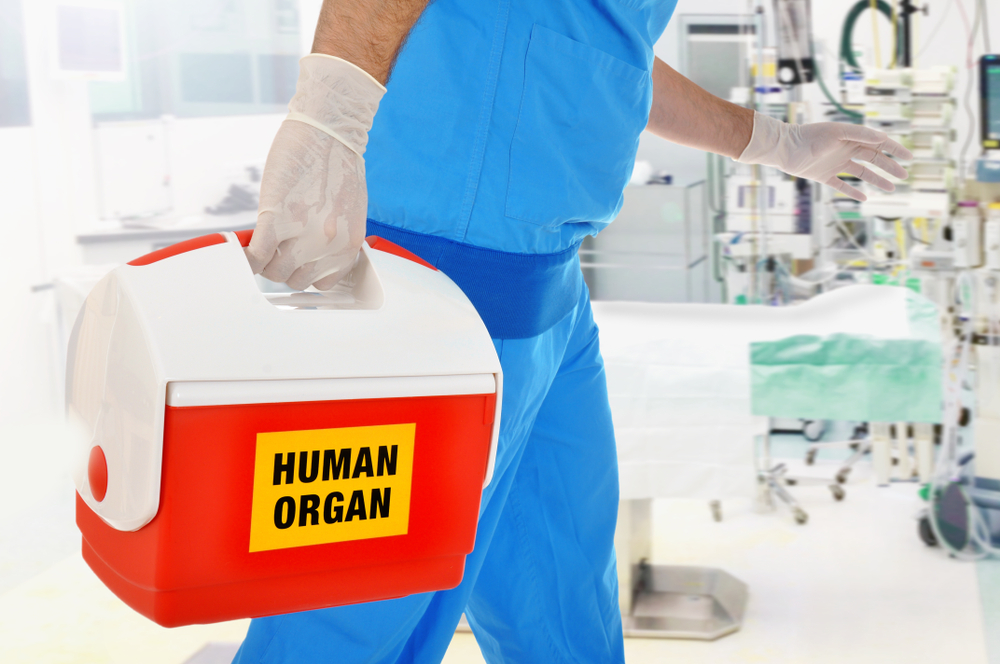 Doctor brings organ donation for organ transplantation in op of hospital - Image(Dan Race)s