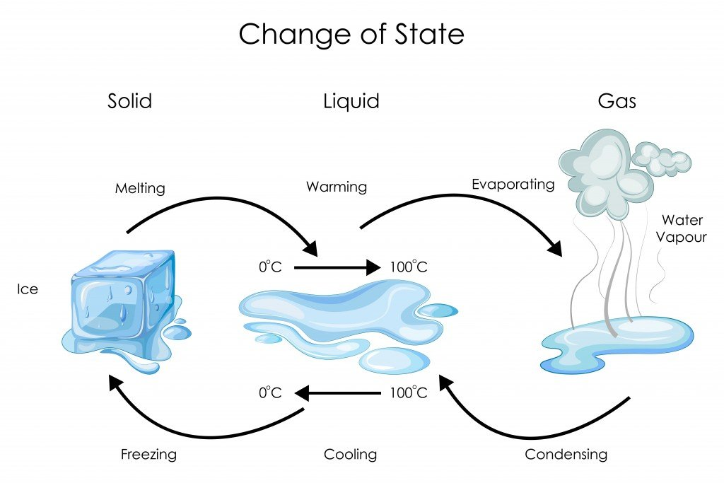 Education Chart of Biology for Change of State for Water Diagram. Vector illustration - Vector(Vecton)S