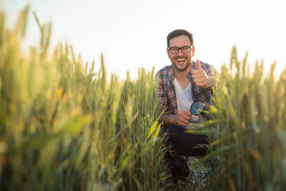Happy young farmer crouching in a wheat field, inspecting plant development. Looking directly at camera and showing thumbs-up. Organic farming and healthy food production - Image(Gligatron)s
