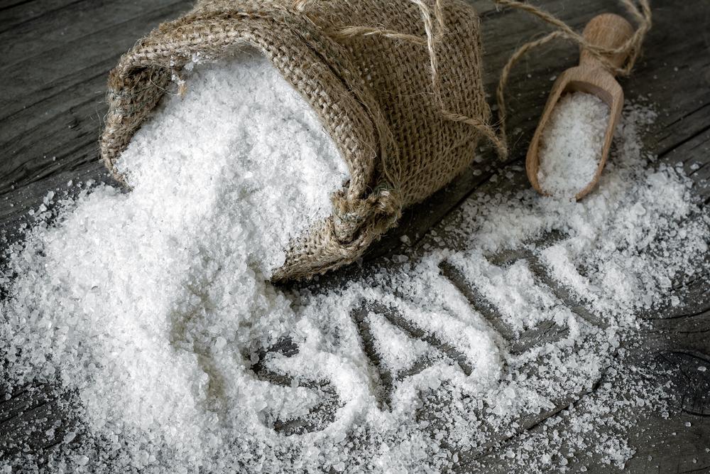Salt - Image( Sunny Forest)s