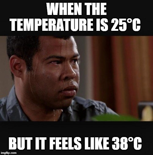 WHEN THE TEMPERATURE IS 25°C; BUT IT FEELS LIKE meme