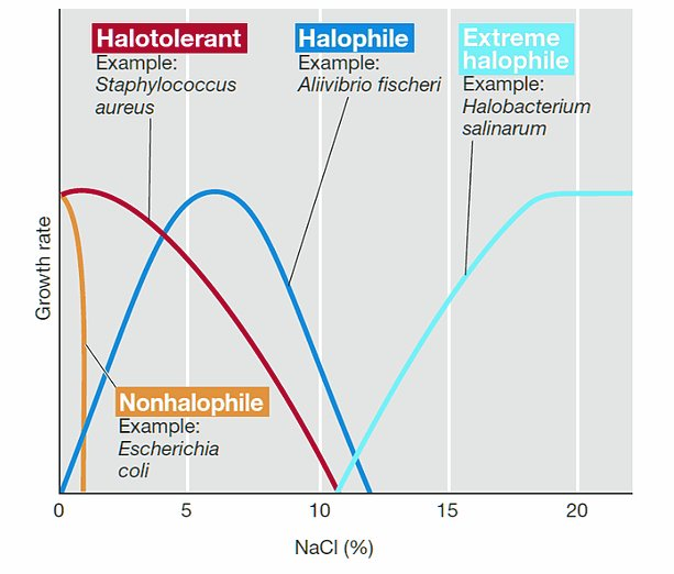 A graph of the growth rate of the various types of halophiles and non-halophiles with respect to the percentage of Salt, i.e., NaCl