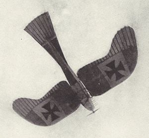 Rumpler Taube monoplane
