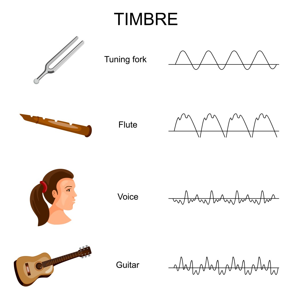 Education Chart of different Sound Timbre Diagram. Vector illustration. - Vector(Vecton)S