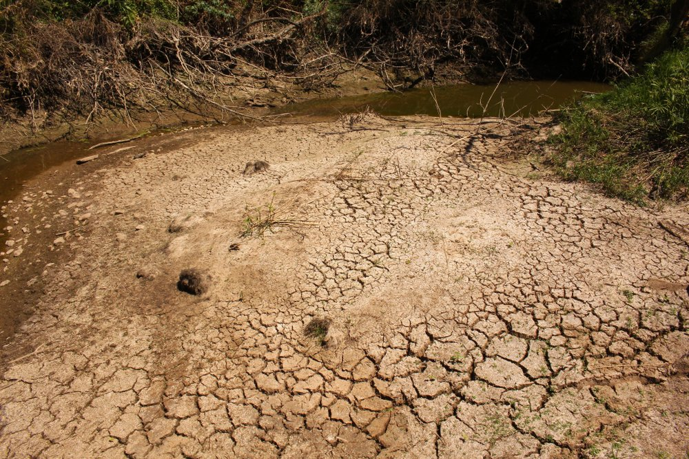 Hard dry cracked mud at the bottom of a stream that has dried up during a severe drought. - Image(Lynette Knott Rudman)s