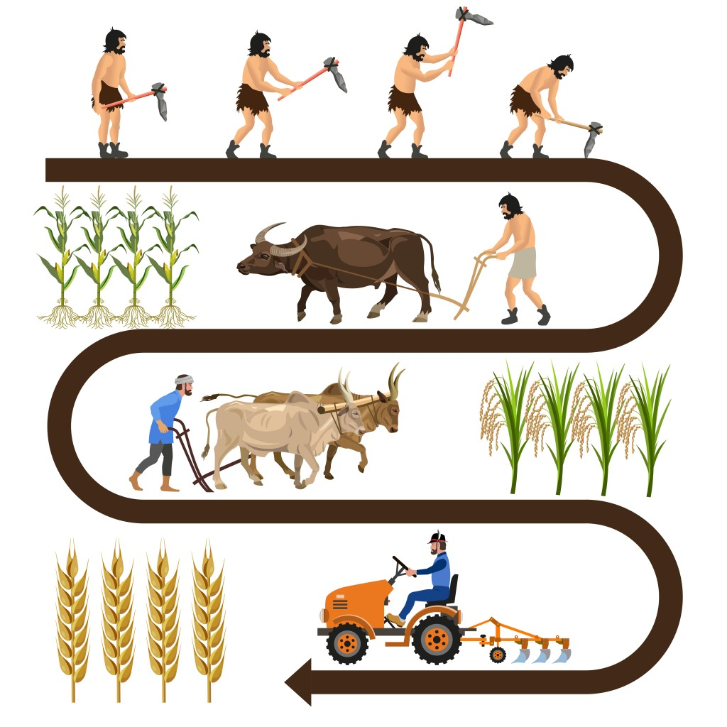 Historical chronology of agriculture. Collection of vector illustrations for infographics - Vector(Hennadii H)s