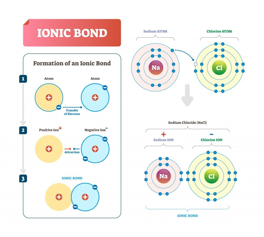 Diatomic Molecules: Definition, Explanation And Examples