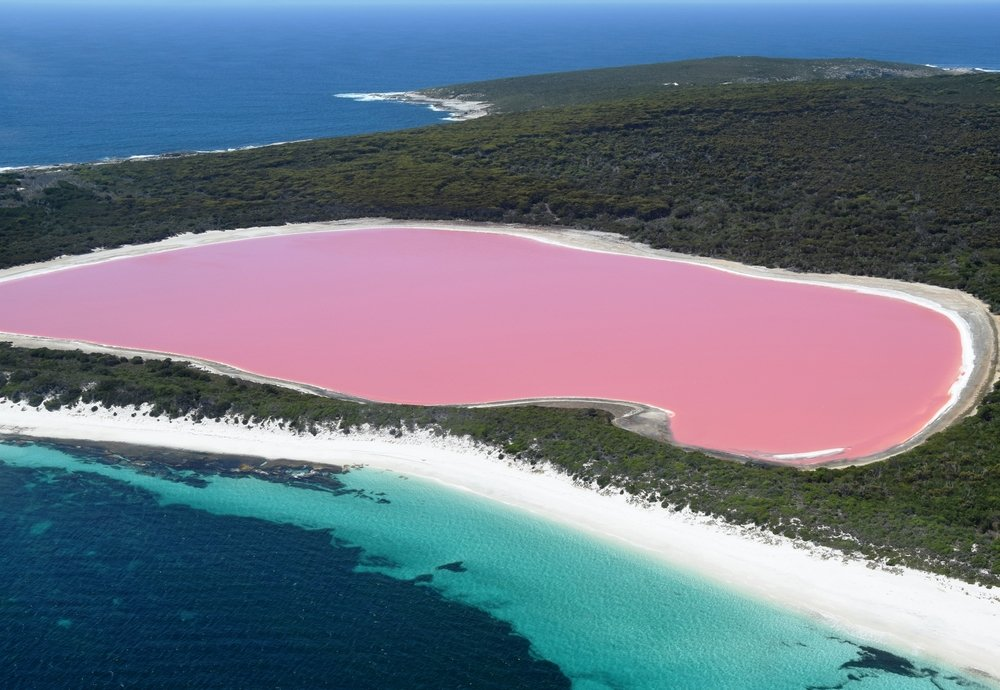 Lake Hillier, Western Australia Amazing pink lake, natural landmark of Australia, in Middle Island, Recherche Archipelago Nature Reserve(matteo_it)s