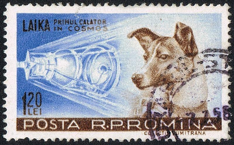 Posta Romana - 1959 - Laika 120 B