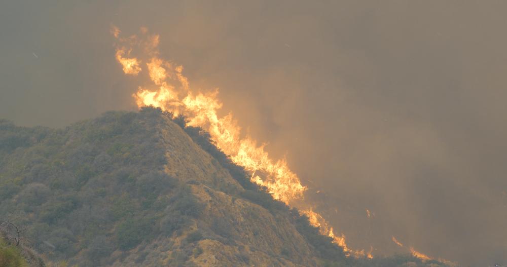 Woolsey Fire 2018 in Malibu California - Image(Morphius Film)s