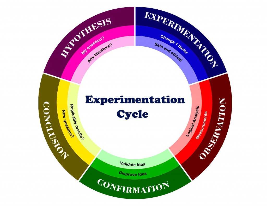 The Cycle of Experimentation
