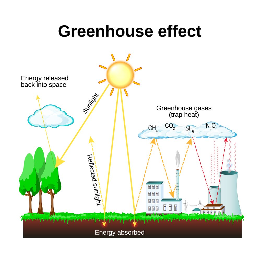Greenhouse effect. diagram showing how the greenhouse effect works. global warming(Designua)S