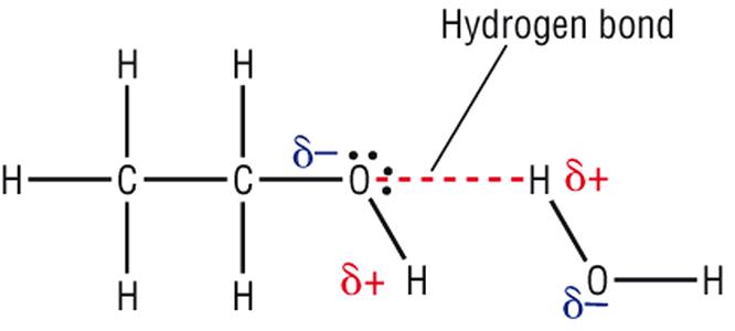 non polar compounds