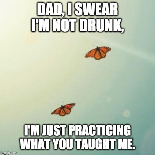 dad i swear i'm not drunk meme