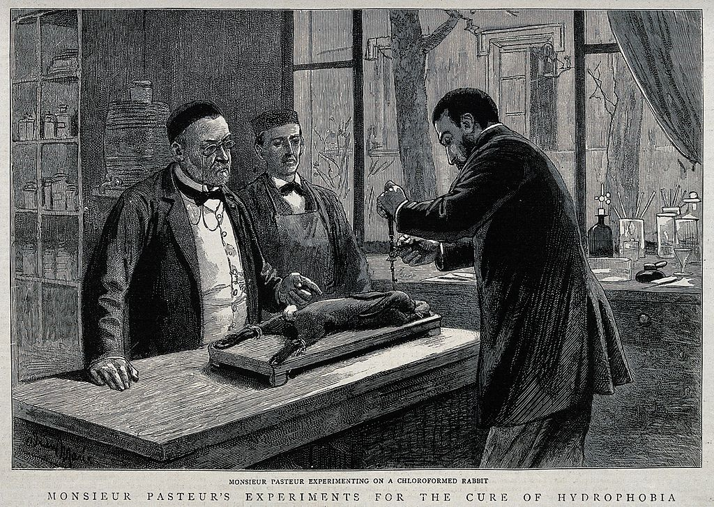 Louis Pasteur injecting rabies virus into a rabbit's brain
