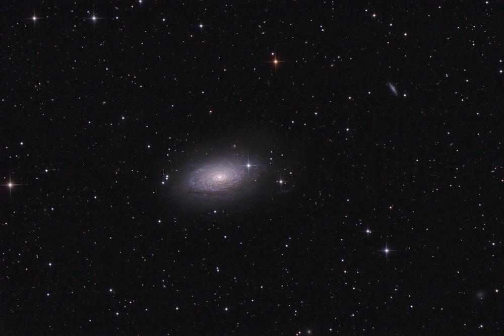 M63 Sunflower galaxy real photo( Igor Chekalin)s