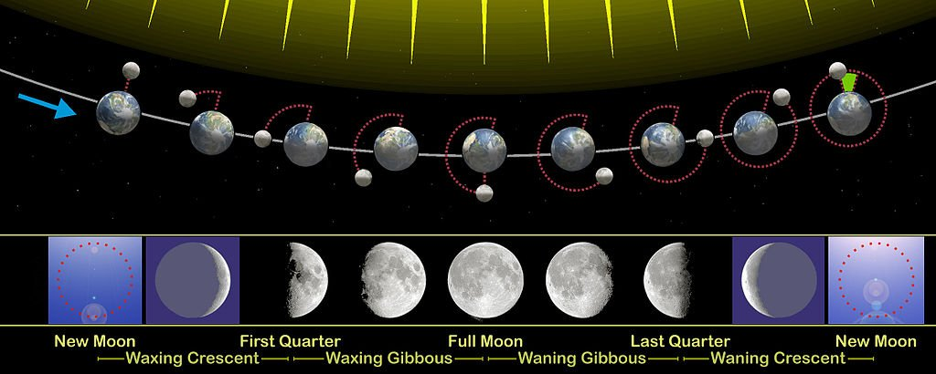 The phases of the Moon as viewed looking southward from the Northern Hemisphere